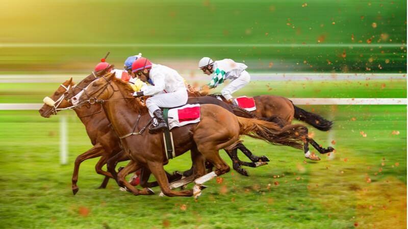 Pferderennen Wetten