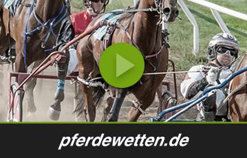 pferdewetten.de test